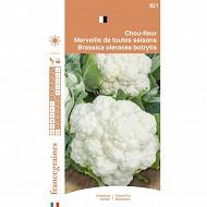 Francegraines Chou fleur Merveille des 4 saisons
