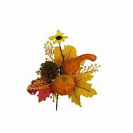 Pic automne coloquinte cocotte citrouille fleur