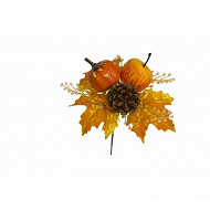 Pic automne citrouille cocotte pomme