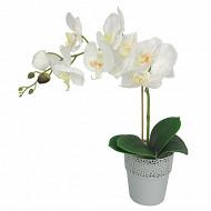 Orchidée en pot dentelle 012x38 cm
