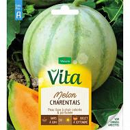 Vita Vilmorin melon charentais