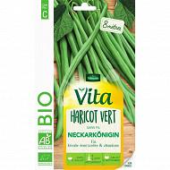 Vita vilmorin haricot neckarkonigin bio
