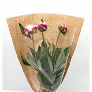 Bouquet  3 pivoines