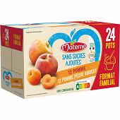 Materne ssa pomme/pomme pêche abricot 24x100g