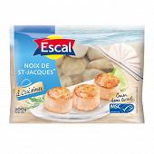 Escal noix de Saint-Jacques sans corail 200g