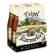 Triple karmeliet 6x25cl 8.4%vol