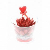 Echeveria rouge et verre + deco