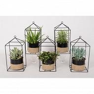 Plantes vertes mix diam12cm en pot métal detroit bande jute + support métal maison