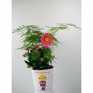 Composition fête des mères 2 plantes référence 49153