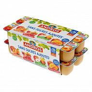 Andros spécialité de pommes fraises poires mangues et abricot 16x100g  sans sucres ajoutés