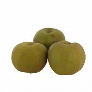 Pomme Canada bio 4 fruits
