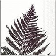 Serviettes x20 fern 33x33cm 3 plis