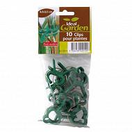 10 clips pour plantes - petit modèle 4,5x3,5cm