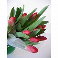 10 Tulipes unicolores rouges