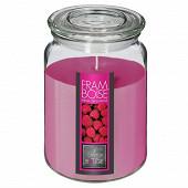 Bougie parfumée Nina dans pot en verre framboise 510 g