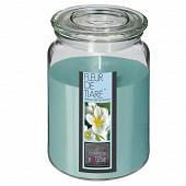 Bougie parfumée Nina dans pot en verre fleur de tiaré 510 g