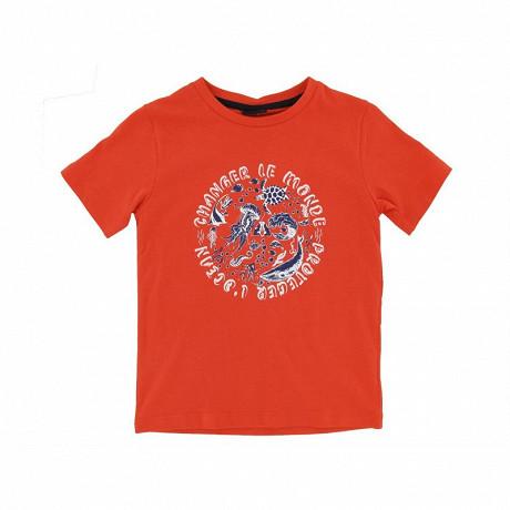 Tee shirt manches courtes garçon GRENADINE 17-1564 TPX 14 ANS
