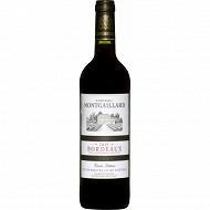 Château Montgaillard AOC Bordeaux Rouge 13.5% Vol.75cl