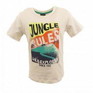 Tee shirt manches courtes garçon ECRU 11-0601 TPX 14 ANS