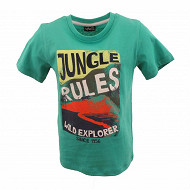 Tee shirt manches courtes garçon VERT 16-5427 TPX 12 ANS