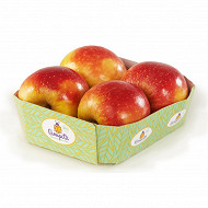 Pomme choupette bio barquette 4 fruits