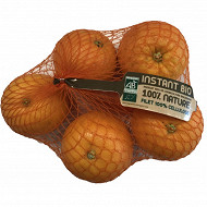 Orange a jus bio salustiana filet 1kg