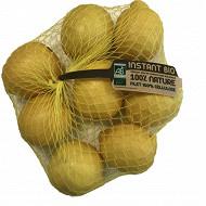 Citron primofiori bio filet 1kg