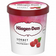 Haagen-dazs pot raspberry sorbet 408G - 460ml