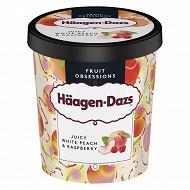 Haagen-dazs pot white peach & raspberry 400G - 460ml