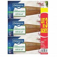 Delpierre Harengs fumés sans arêtes -25% de sel 510g
