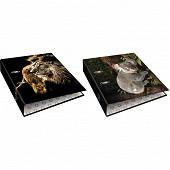 Clementina frog classeur a levier decor animaux sauvages a4
