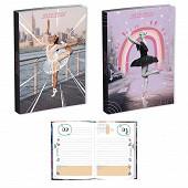 Agenda scolaire 12X17 1J/P Ballerine
