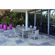 Ensemble zinnia 1 table + 6 fauteuils
