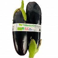 Aubergine bio 2 fruits