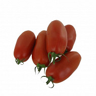 Tomate torino