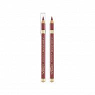 Color Riche lip liner contour des levres bois de rose n°302 NU