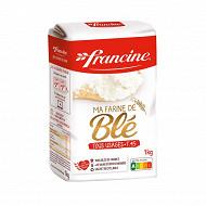 Francine farine de blé  T45 1kg