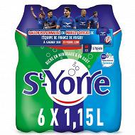 St yorre eau minerale naturelle naturellement gazeuse 6x1.15l