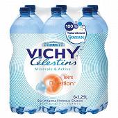 Vichy celestin eau minérale naturelle gazeuse 6 x 1,25l