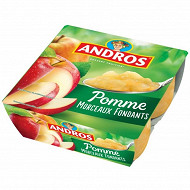 Andros dessert fruitier morceaux pommes nature 4x100g