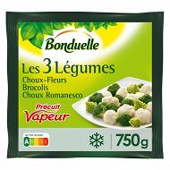 Bonduelle mélange 3 légumes choux fleurs brocolis choux romanesco 750g