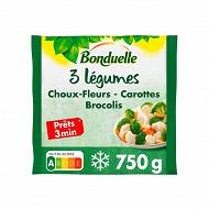 Bonduelle mélange 3 légumes brocolis carottes choux-fleurs 750g