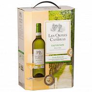 Les ormes de cambras vin de pays d'oc sauvignon 5l 12% Vol.