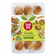 Céréal bio falafels épinards et épices 180g