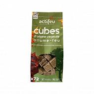 Actifeu 72 cubes bois compressé allume feu écologique