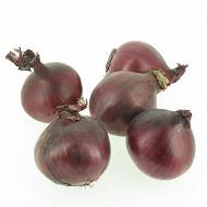 Oignon rouge bio filet 500g