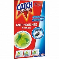 Catch stickers anti-mouches décoratifs vert x6