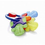 Clefs de dentition réfrigérantes avec ice gel Nuby
