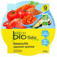 Nature bio assiettes 12 mois saumon ratatouille quinoa 230g