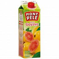 Mont Pelé nectar goyave 1l